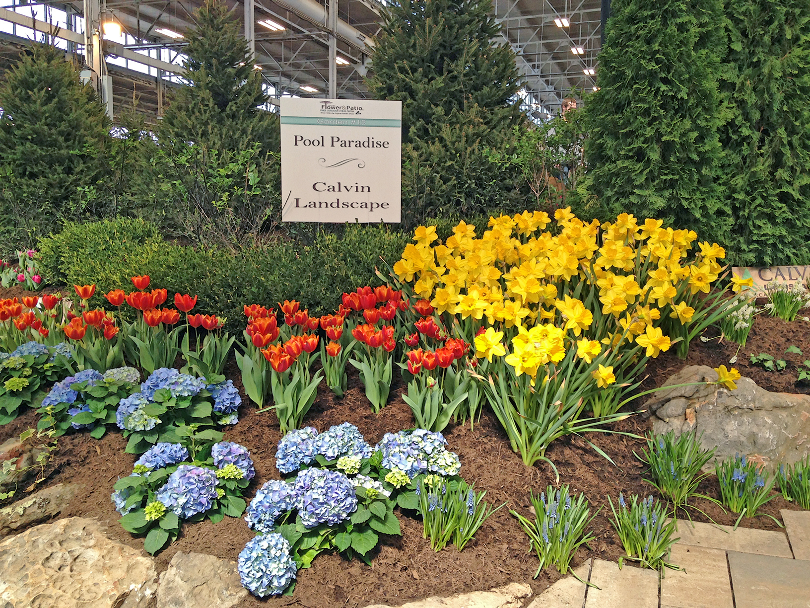 ... Spring Flowers And Landscape Display